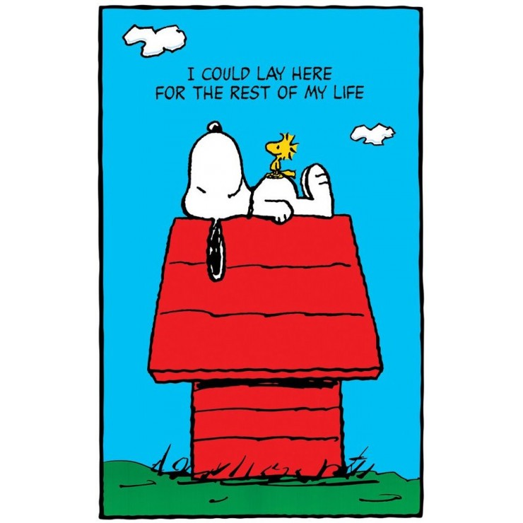 Snoopy And Woodstock Poster Retroactives Com
